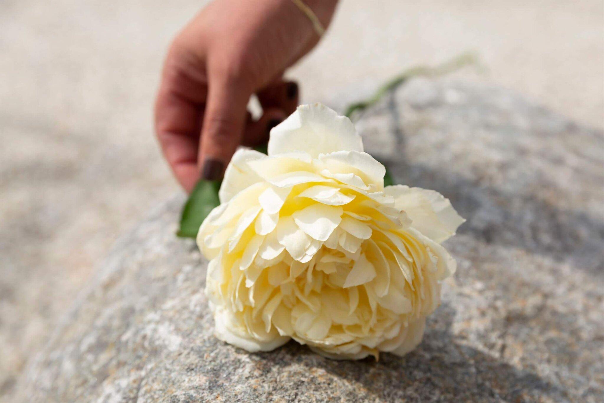 kist + bloemen